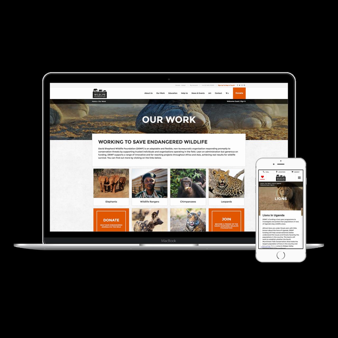 David Shepherd Website | Tom Hoadley | Freelance Wordpress Developer